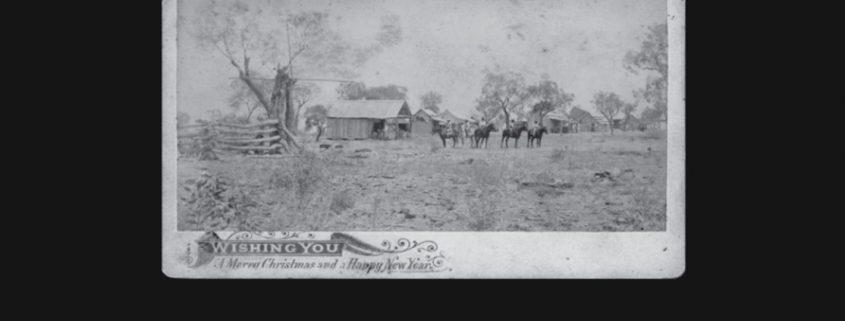 Truii data visualisation, analysis and management christmas card mount abundance station 1898 small